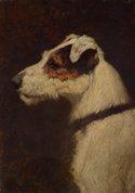 My best friend, 1910 by Douglas Fry
