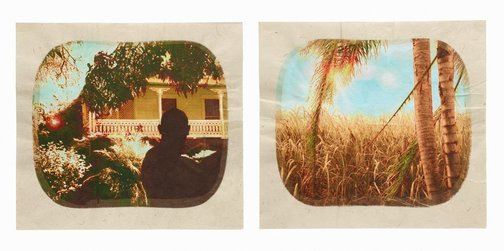 An image of Plantation (Diptych No. 1) by Tracey Moffatt