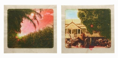 An image of Plantation (Diptych No. 3) by Tracey Moffatt