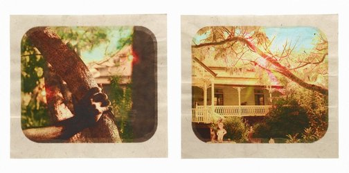 An image of Plantation (Diptych No. 11) by Tracey Moffatt