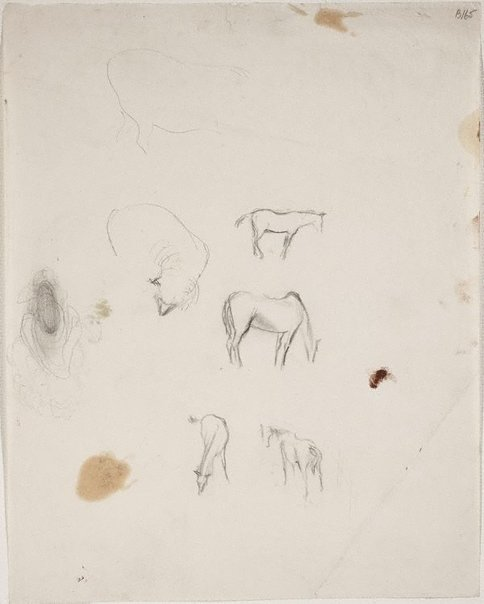 An image of (Studies of horses and sheep) (London genre) by William Dobell