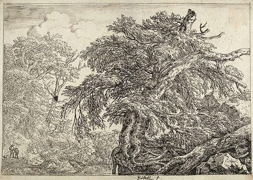 An image of The great beech, with two men and a dog by Jacob Isaacksz van Ruisdael