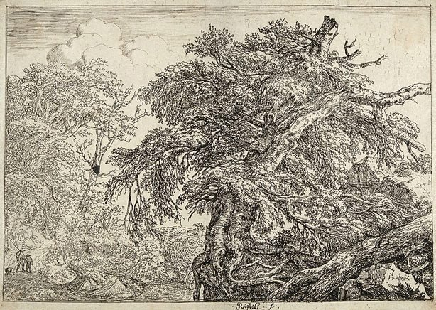 An image of The great beech, with two men and a dog