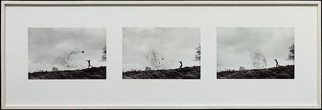An image of Leaf throws, Blairgowerie, Perthshire, Tayside, 3 January 1989