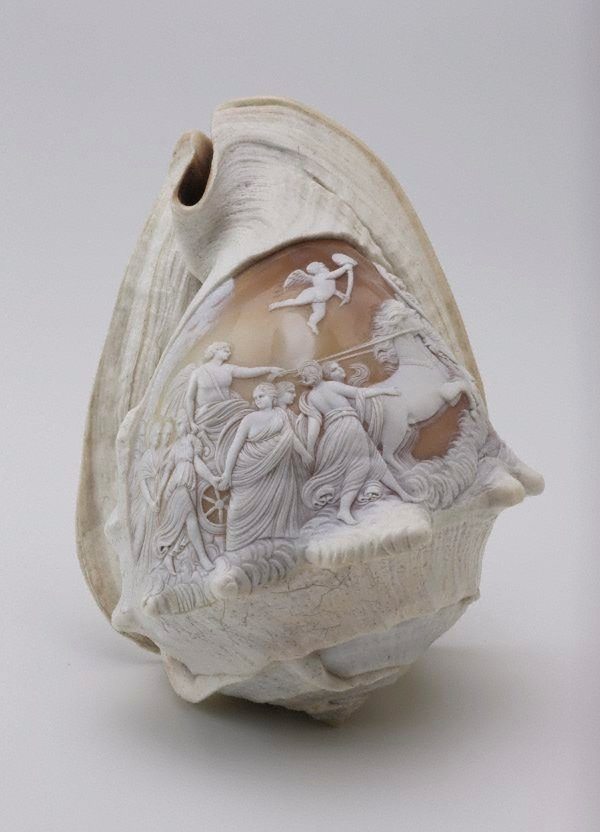 An image of Carved sea shell, carved with Guido Reni's Aurora