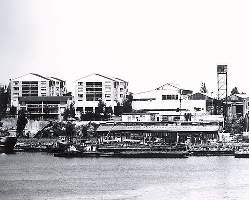 An image of Rozelle Bay: Glebe Point 1980 by Mark Johnson