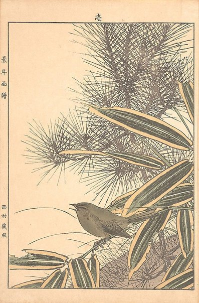 An image of Red pine, mountain white bamboo and bush warbler by Imao Keinen