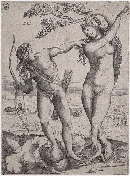 An image of Apollo and Daphne by Agostino dei Musi
