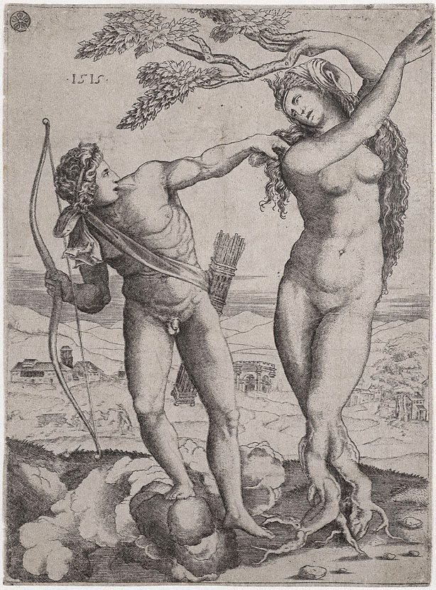 An image of Apollo and Daphne