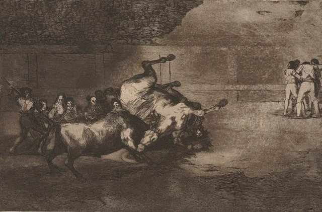 An image of A bull overturning a horse