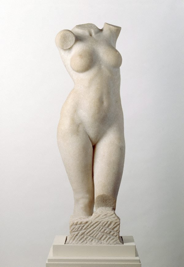 An image of Australian Venus