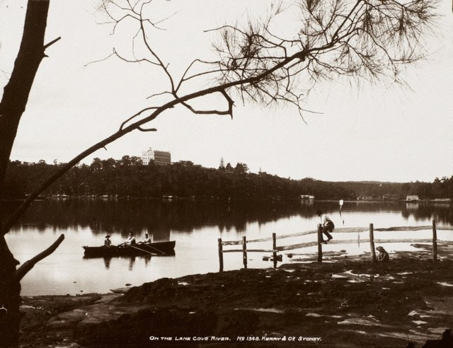 An image of On the Lane Cove River