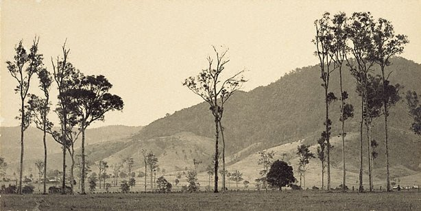 An image of Cambewarra Mountain, New South Wales