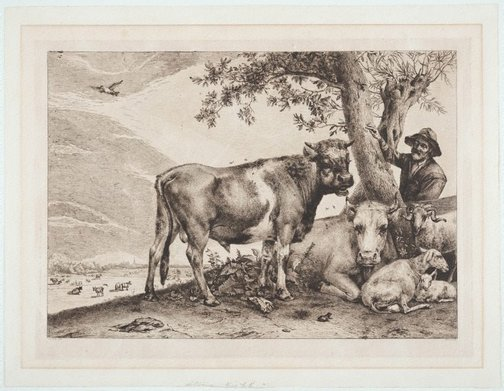 An image of Great bull by Dominique Vivant-Denon, after Paulus Potter