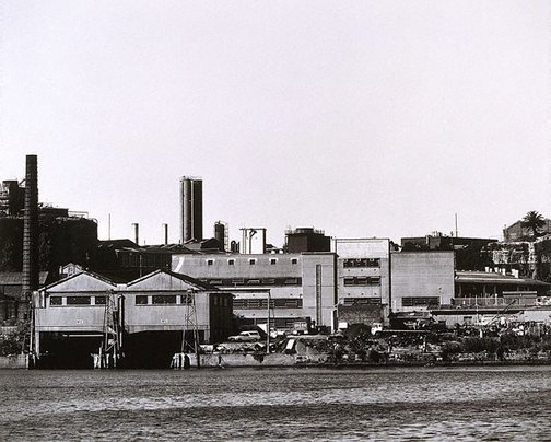 An image of Black Wattle Bay: Pyrmont II 1979 by Mark Johnson