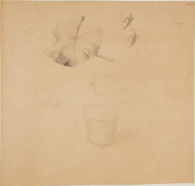 An image of (Face studies, leaf and flower pot) (London genre)