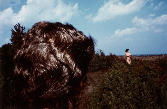 An image of Untitled (nude in field)
