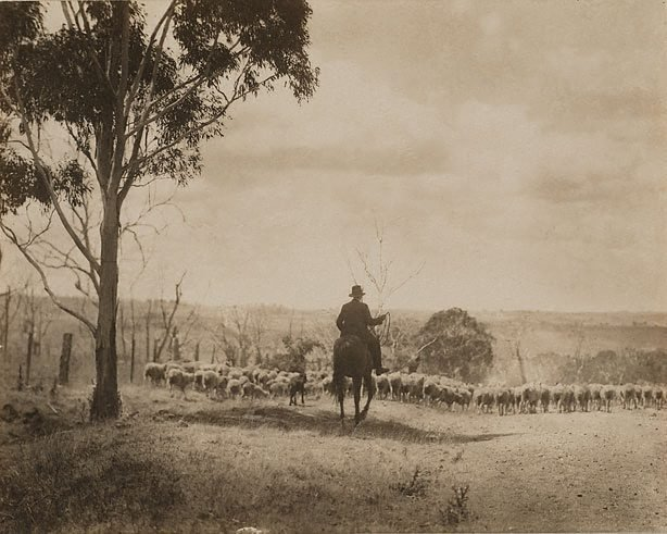 An image of Australian Stock Route (Berrima district)