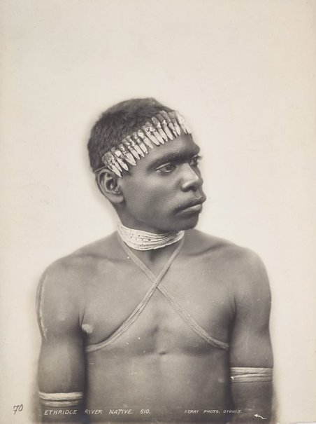 An image of Portrait of a man from Ethridge (sic) River, North Queensland by Charles Kerry