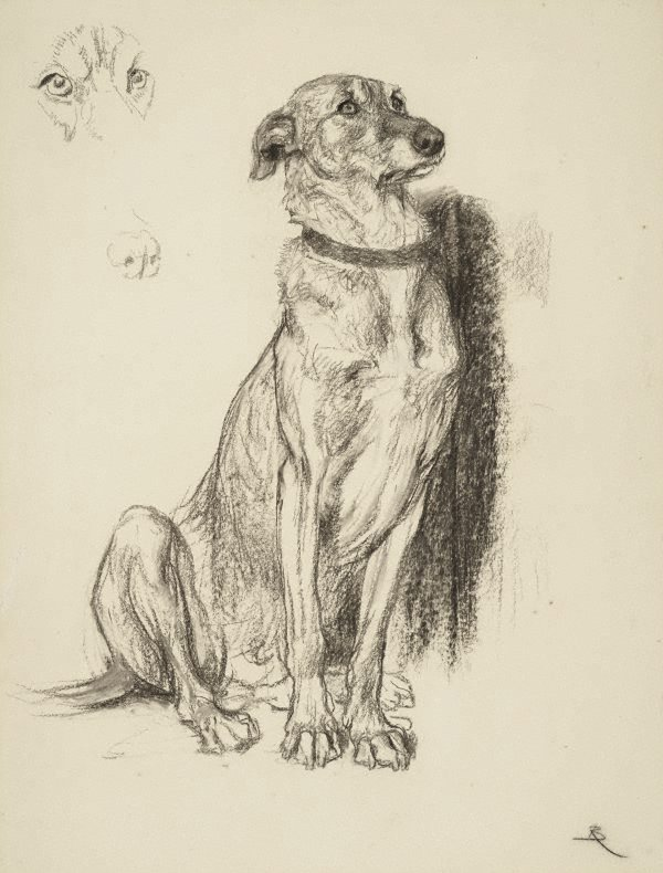 An image of Study for the dog in 'Requiescat'
