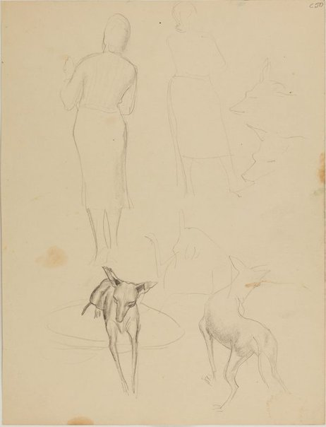 An image of (Figure and dog studies) (Early Sydney period) by William Dobell