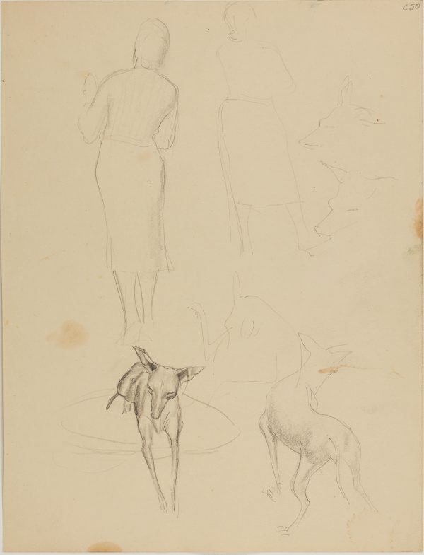 An image of (Figure and dog studies) (Early Sydney period)