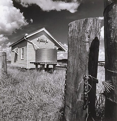 An image of 'Eurella', North Queensland by Max Dupain