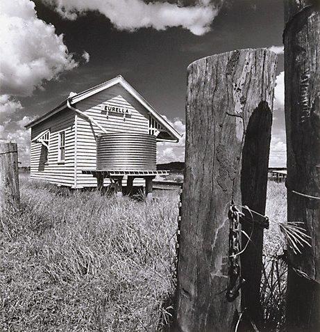 An image of 'Eurella', North Queensland