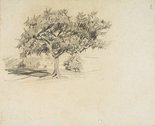Alternate image of recto: Trees verso: Tree in landscape by Lloyd Rees