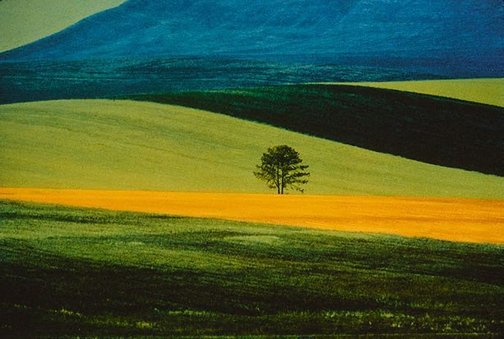 An image of Landscape by Franco Fontana
