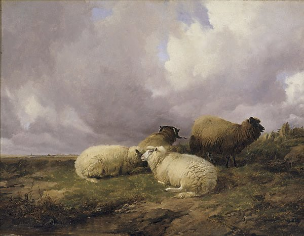 An image of Four sheep in a landscape