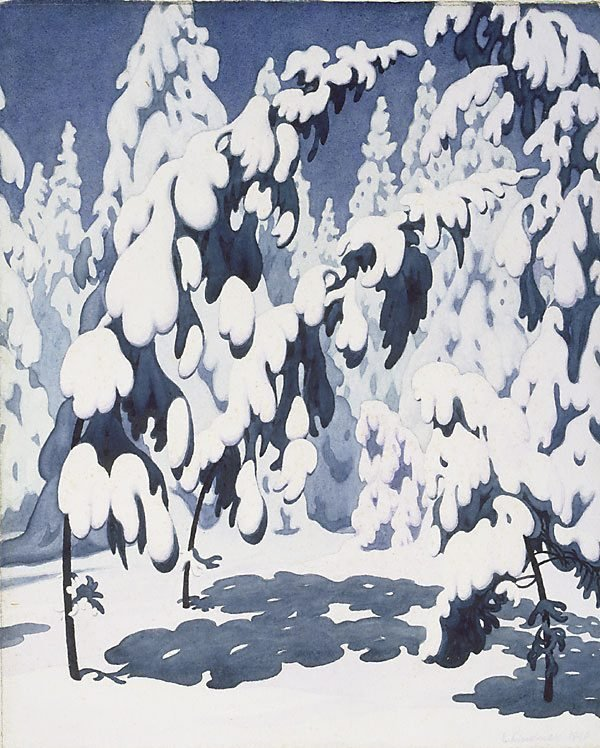 An image of Snow on pine trees