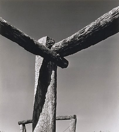 An image of From the stockyard series, 'Canobie', North Queensland by Max Dupain