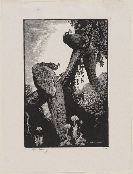 An image of Repose by Lionel Lindsay