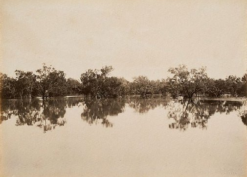 An image of Junction of Darling and Warrego Rivers (second view) by Charles Bayliss
