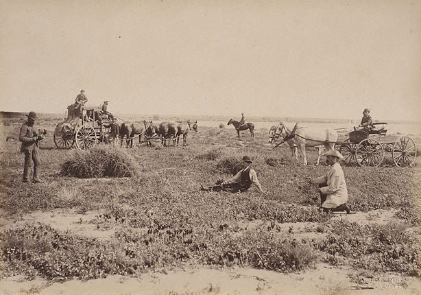 An image of On Culpaulin Station, Darling River