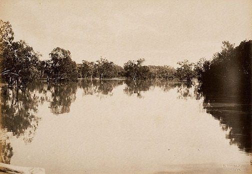 An image of Junction of Darling and Warrego Rivers (first view) by Charles Bayliss