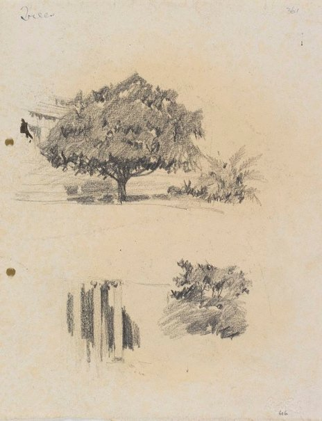 An image of recto: Trees and Columns of the Art Gallery's porch verso: Trees [upside down] by Lloyd Rees