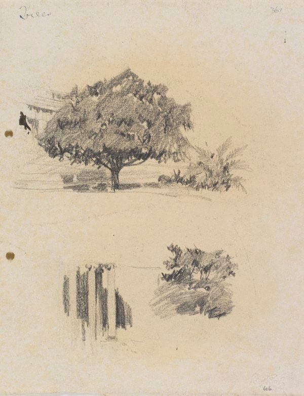 An image of recto: Trees and Columns of the Art Gallery's porch verso: Trees [upside down]