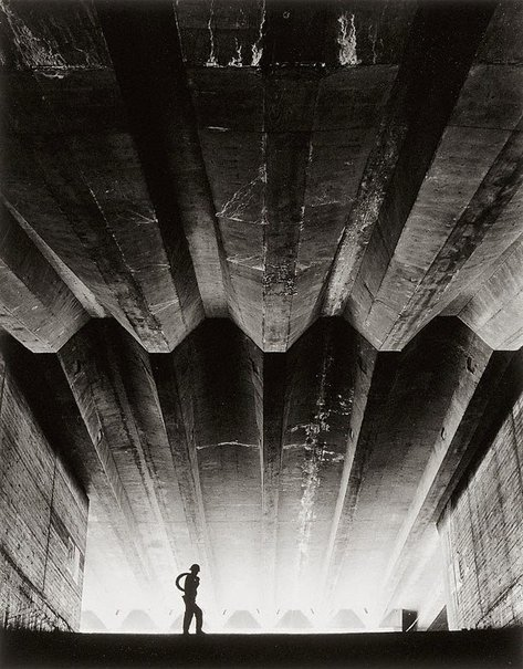 An image of Concrete support beams (Sydney Opera House) by Max Dupain