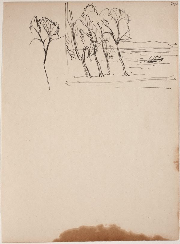 An image of (Trees on shoreline) (Early Sydney period)