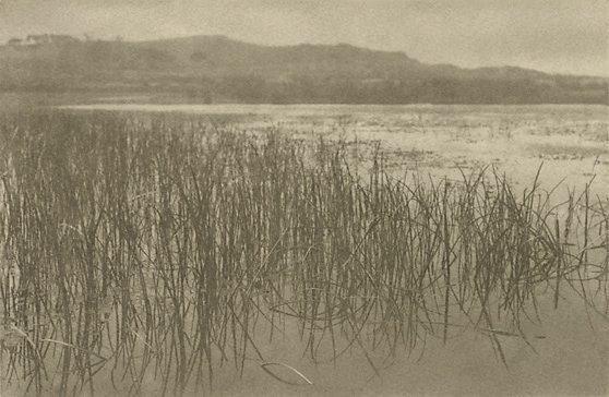An image of The lagoon, Collaroy