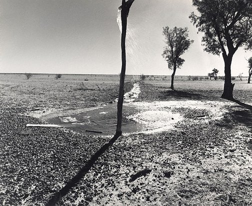 An image of Bore water supply, 'Canobie', North Queensland by Max Dupain