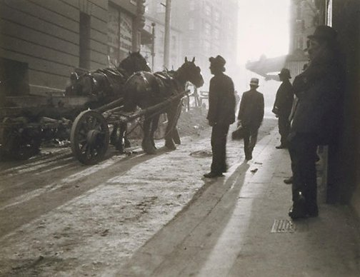 An image of Untitled (dray horses in lane) by Harold Cazneaux