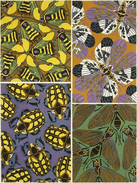 An image of Insectes, Papillions (Bees and Beetles) by Eugène Alain Séguy