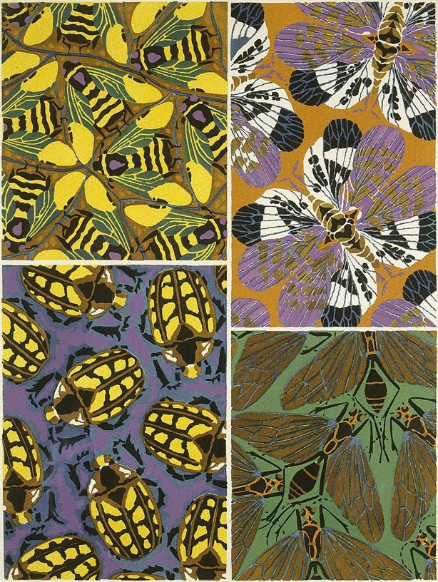 An image of Insectes, Papillions (Bees and Beetles)