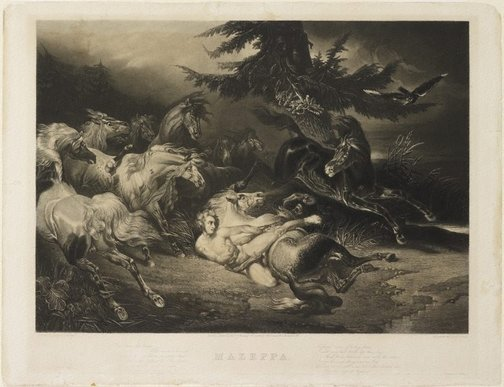 An image of Mazeppa surrounded by horses by James G S Lucas, after Horace Vernet