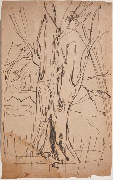 An image of (Tree trunk) (Sketches from Wangi and Lake Macquarie) by William Dobell