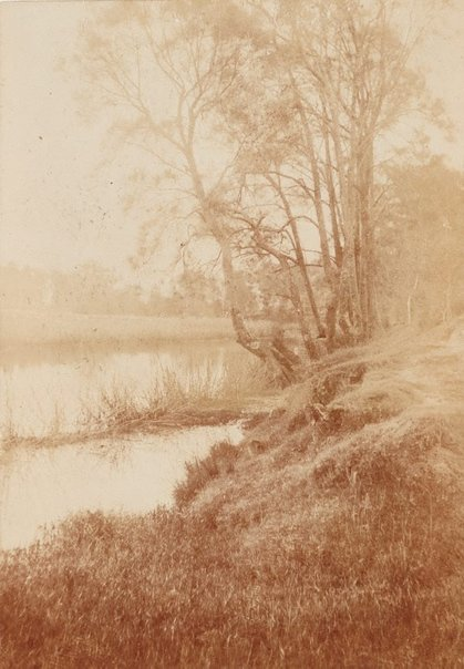 An image of Untitled (riverbank) by Norman C Deck