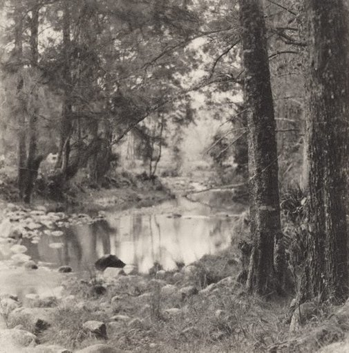 An image of Untitled (river scene) by Norman C Deck